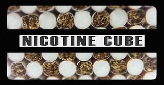 Nicotine Cube - 2013